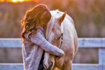 menina abraçando um cabalo manso