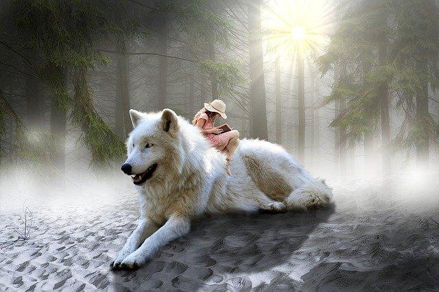 mulher sentada em um lobo branco fantasia