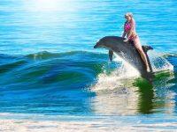 mulher montada em um golfinho no mar